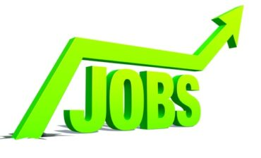 Employment in Jamaica up 8.3% year-over-year